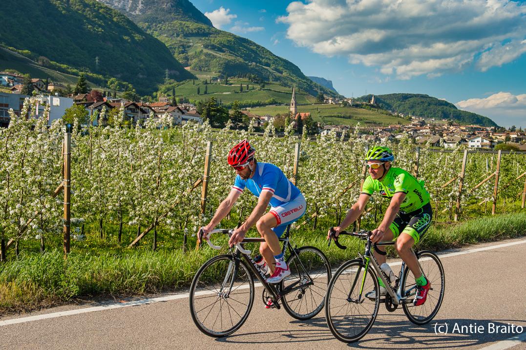 Südtiroler Weinstrasse Tramin Kalterer See © Antie Braito
