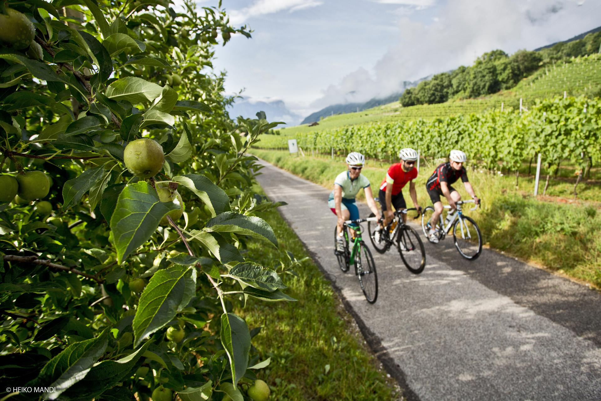 Rennradfahren in der Region Kronplatz